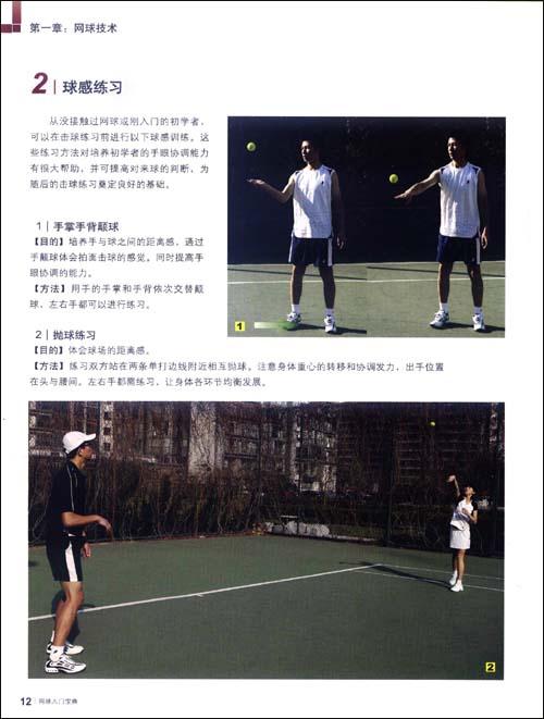 网球入门宝典