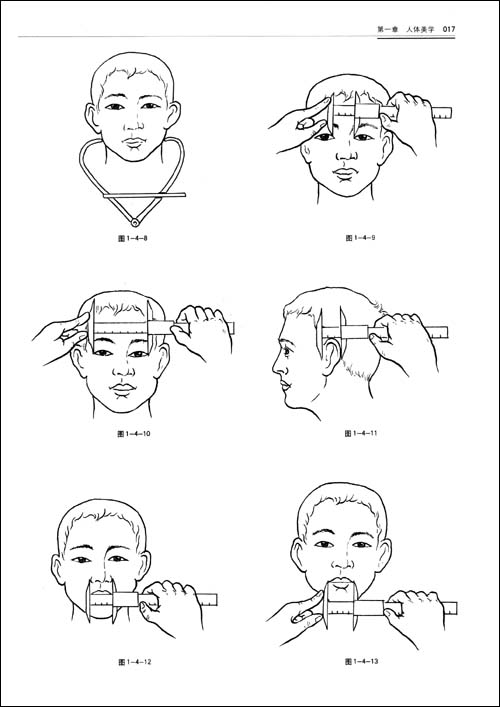 美容外科解剖图谱