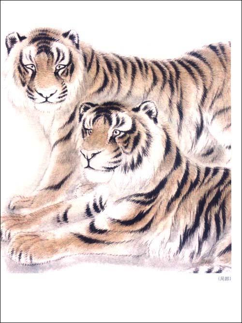 工笔老虎画法图片