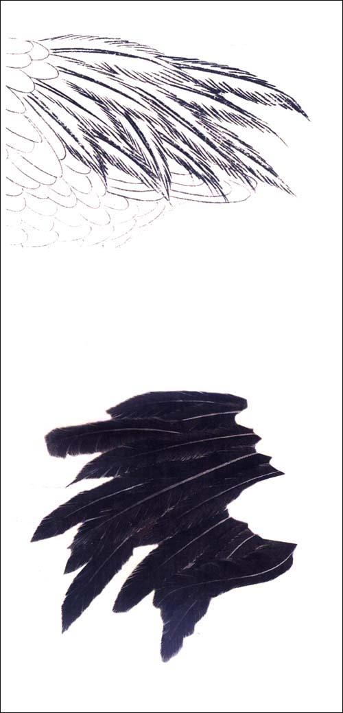 工笔仙鹤画法图片