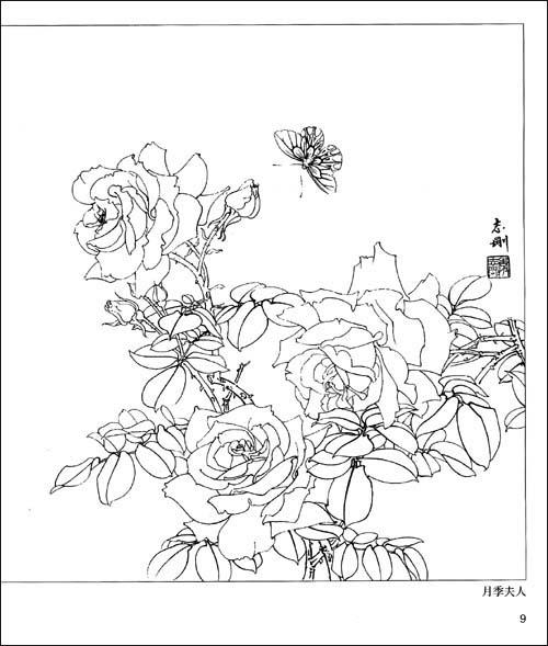 简单手绘花素材白描