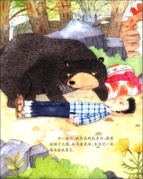沈石溪动物绘本(套装共10册):亚马逊:图书
