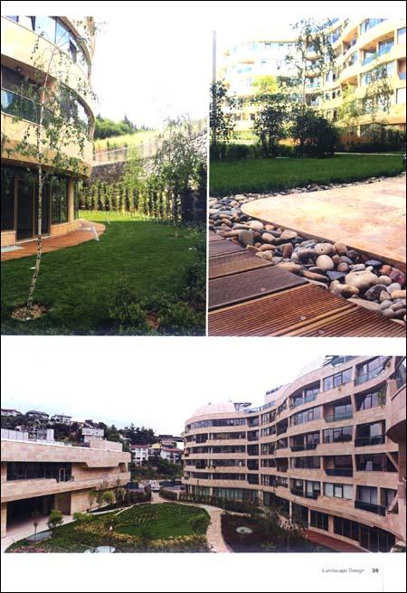 景观设计:城市中的绿色屋顶
