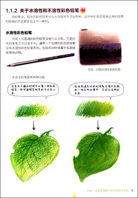 飞乐鸟的色铅笔手绘世界:温馨彩绘篇