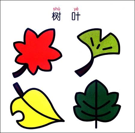 智之虎宝宝学画幼儿绘画开发计划:植物平装–2010年11月1日