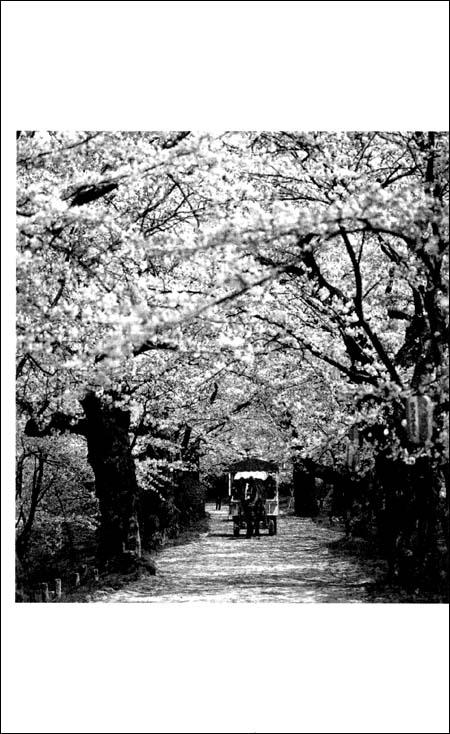 偶然写成的日本野史