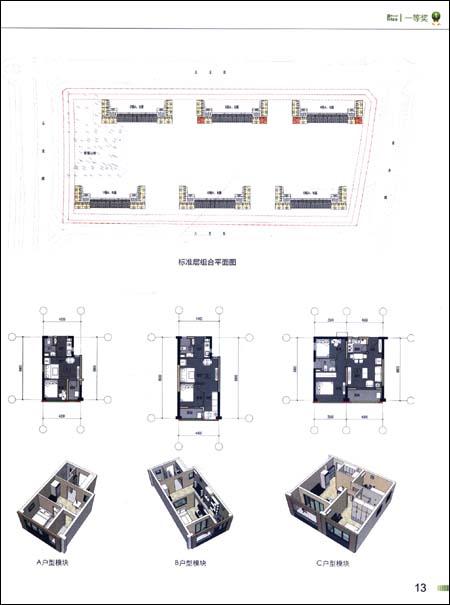 中国首届保障性住房设计竞赛获奖方案图集:亚马逊:图书