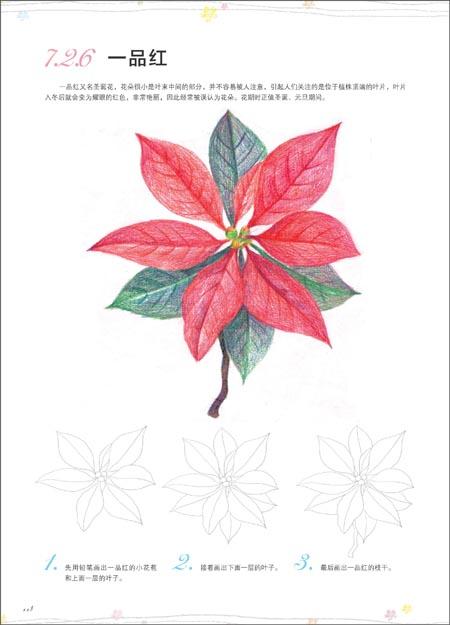 飞乐鸟的色铅笔手绘世界 花卉入门篇.pdf图片