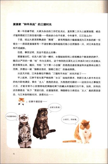 贱猫爪记:主编江米条的智慧猫生
