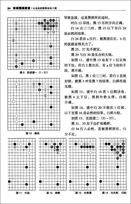 阶梯围棋教室:从业余初段到业余3段