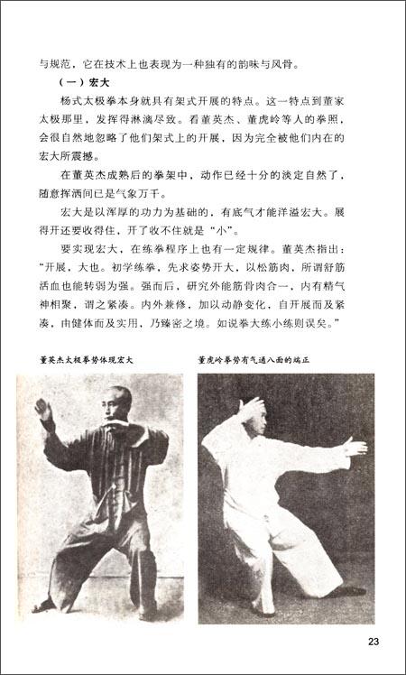 太极大家系列•董家太极:董英杰太极拳传承与精义