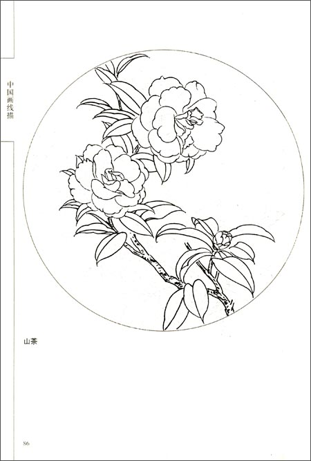 回至 中国画线描:百花画谱 (平装)