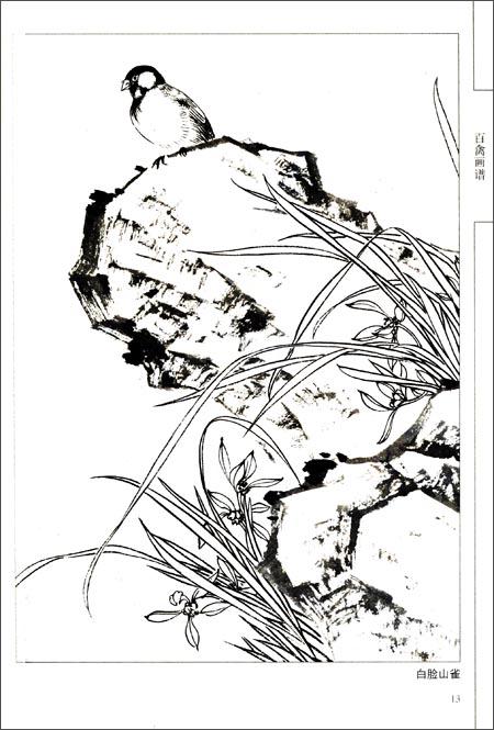 回至 中国画线描:百禽画谱 (平装)