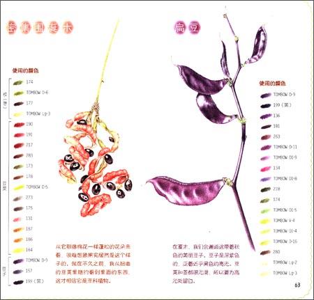 色铅笔de自然彩绘:清新花草•美味果实