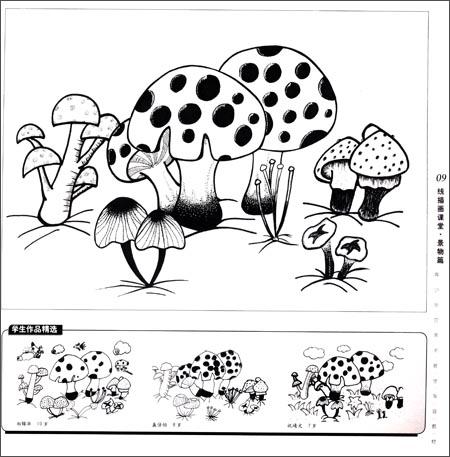 线描画课堂-少年美术名师课堂-2图片