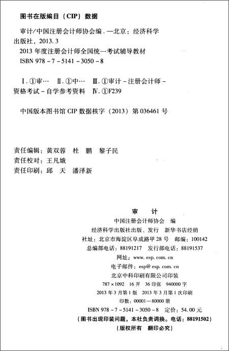 注册会计师全国统一考试辅导教材:审计
