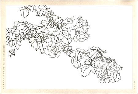 回至 白描花卉写生范本:月季 (平装)