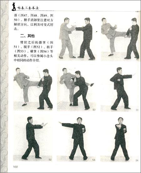 咏春三套拳法 -舒建臣; 热血无赖咏春招式; 图片