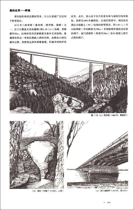 建筑结构的奥秘:力的传递与形式