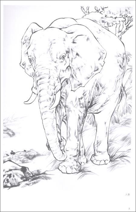 回至 工笔画白描教学示范:动物画稿 (平装)