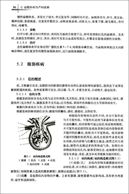 回至 高职高专畜牧兽医类专业系列教材:动物外科与产科疾病 (平装)