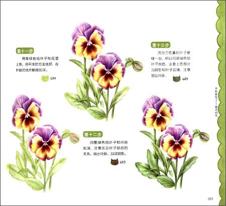 色铅笔绘优雅四季花