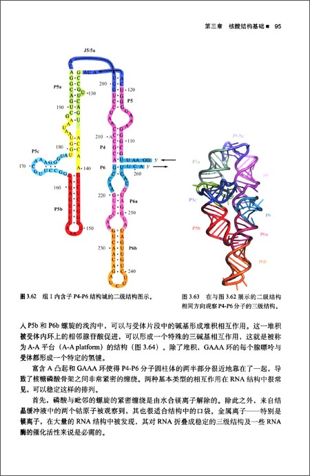 结构生物学:从原子到生命