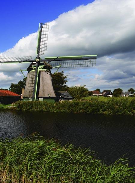 婷,在荷兰
