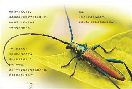 法布尔:昆虫记