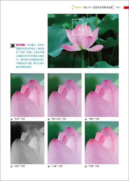 Nikon D90数码单反摄影技巧大全