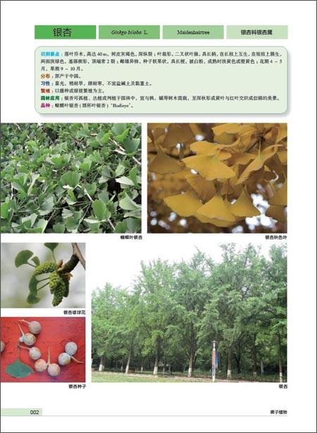 景观园林植物图鉴:亚马逊:图书