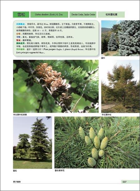 风景园林学科