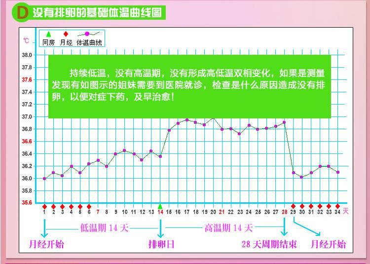电子体温计 可测女性测排卵期