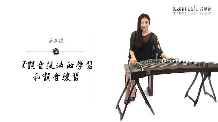 袁莎古筝映山红谱图片