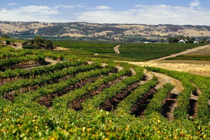 澳洲东南澳葡萄酒产区
