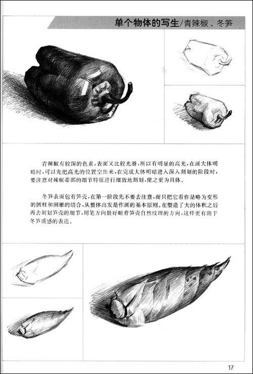 水果的   画法   (最新浙美版):亚马逊:图书   画法   静物