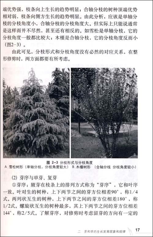 园林树木整形修剪技术