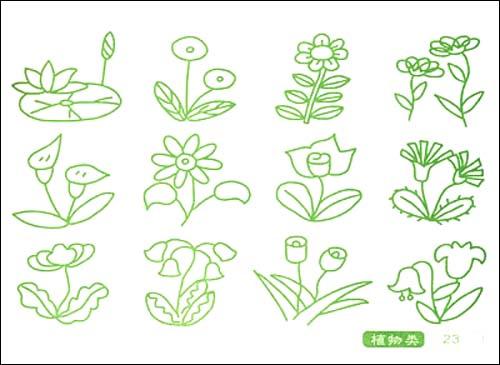 儿童简笔画花朵