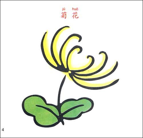 植物 宝宝学画画简笔画书大全
