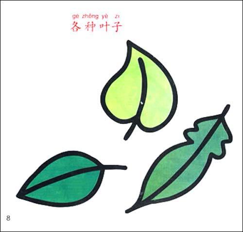 简笔画树叶