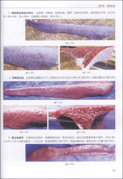 科学养猪与猪病防制原色图谱