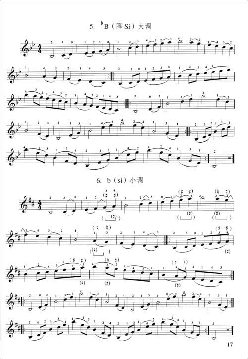 小提琴基础教程:亚马逊:图书