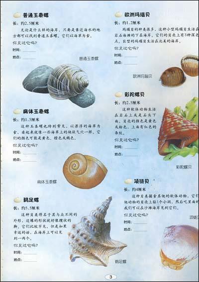海洋生物 我的动物贴画小百科