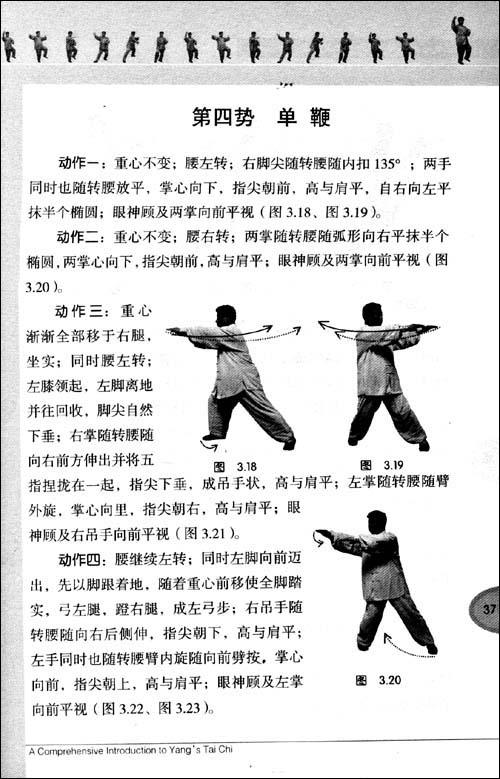 杨式太极拳阐微