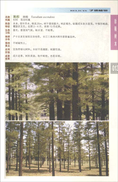 园林景观植物:树木图典:亚马逊:图书