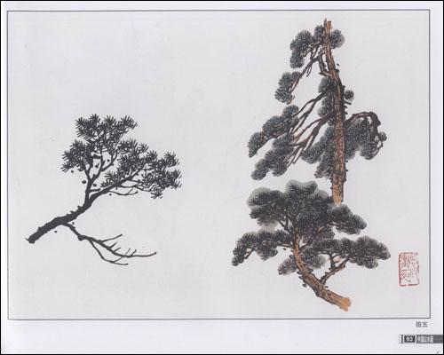 树种接近北方,为画好山水画,要很好学习画树,从枯树开始,柳树,松树,夹