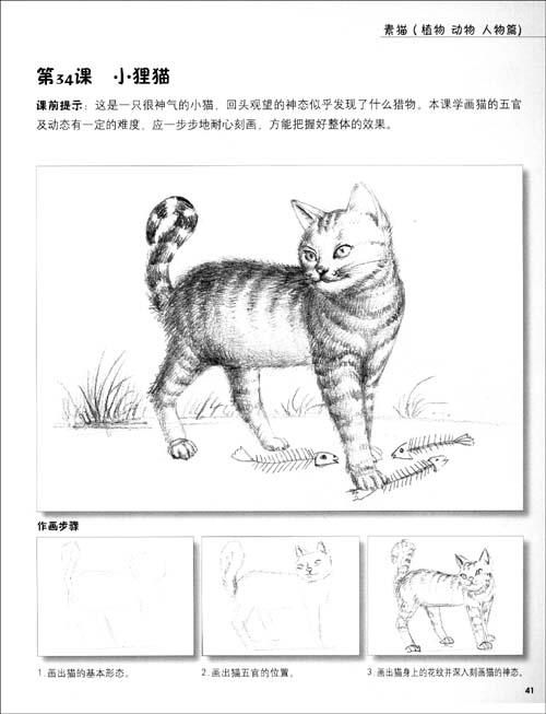 名师教画:素描(植物,动物,人物篇