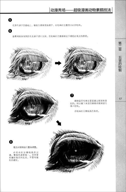 动漫的眼睛素描画法图片; 动漫秀场9 超级漫画动物素描技法  (500x