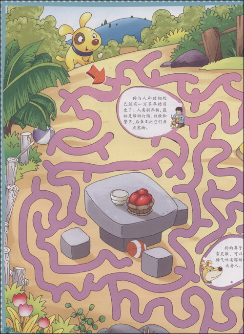 趣味百科走迷宫:陆地动物:亚马逊:图书