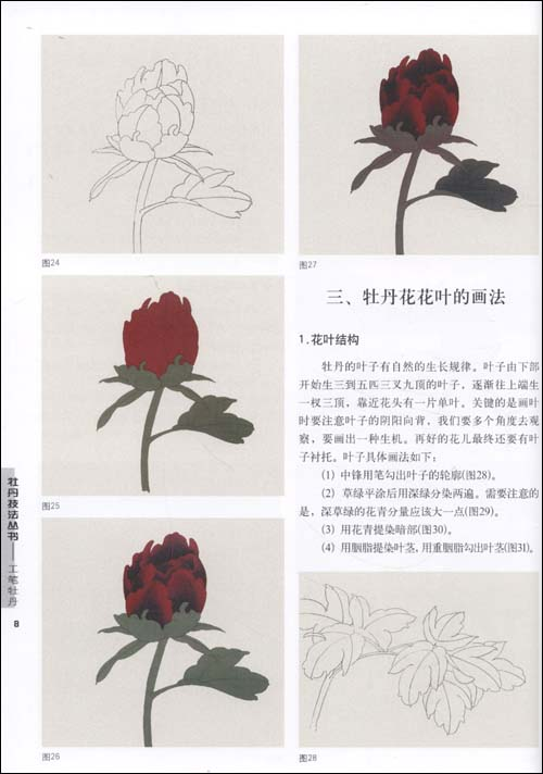 红色花朵画法; 77【工笔】牡丹技法丛书:工笔牡丹
